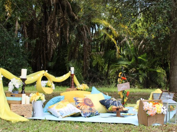 Picnic in the Park - Perfect Date Arrangements