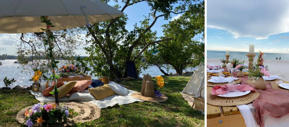 Perfect Events Suited for a Planned Picnic